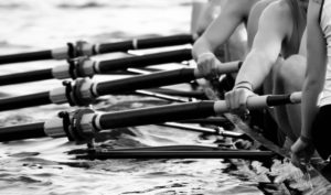 fitforbusiness rowing